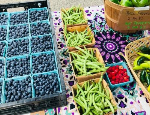 Farmers Market to Return to Downtown Elgin for 2019 Season